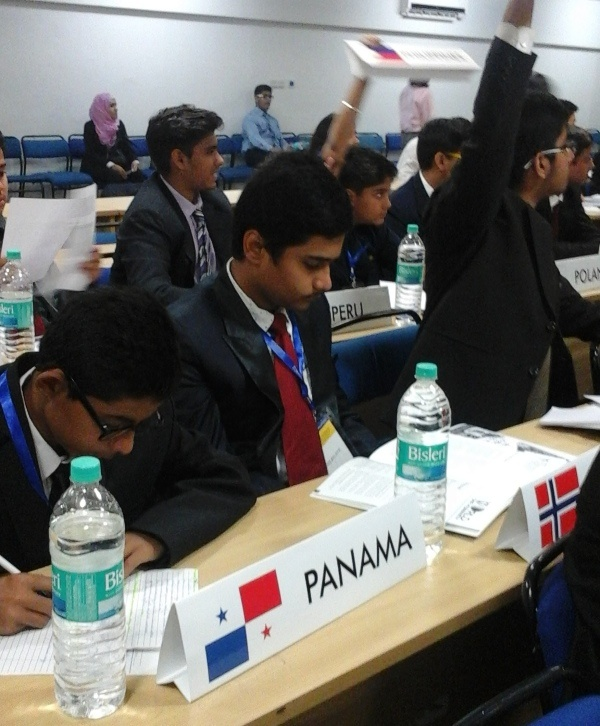 Participation in AIMUN 2